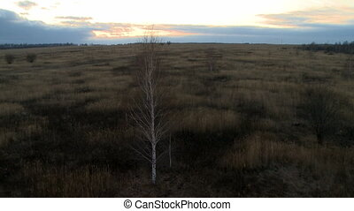 Landscape at dusk aerial shot. - Landscape with sunset and...