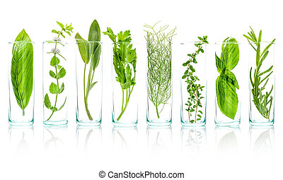 Close Up bottles of essential oils with fresh herbs . Sage,...