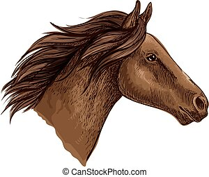 Brown horse head isolated sketch of running racehorse....