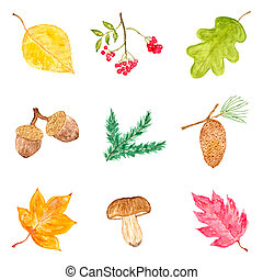 Watercolor Collection of Autumn Elements