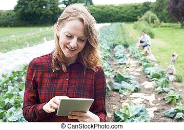 agrícola, tableta, trabajador, campo, hembra, digital,...