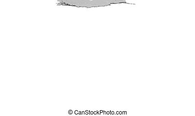 grey paint pouring on white background. Colored paint -...