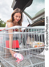 Beautiful young woman shopping in a grocery...