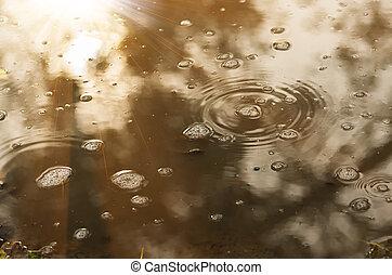 bubbles and leaves in a muddy puddle during rain - bubbles...