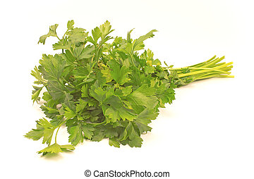 Parsley leaf Stock Photo Images. 41,885 Parsley leaf royalty free pictures and photos ...