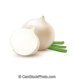 Whole and Sliced White Onion with Chopped Onions - Vector...