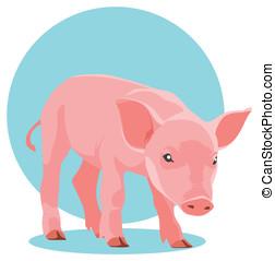 suckling pig. mammal - illustration of pink suckling pig on...