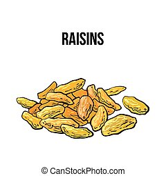 Pile of dried raisins, sketch style, hand drawn vector...