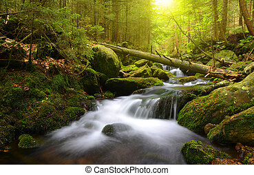 Mountain creek - Waterfall in the national park Sumava-Czech...