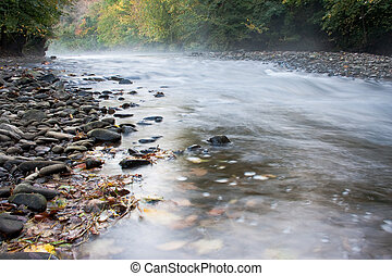 Misty stream with autumn colours leaves and pebbles