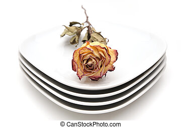 Single dry rose on a plate, white background
