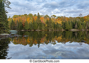 Autumn Foliage Reflecting in a Lake - Ontario, Canada -...