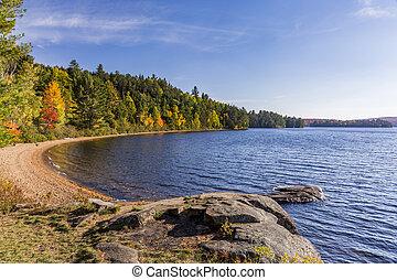 Shoreline of a Lake in Autumn - Ontario, Canada - Shoreline...