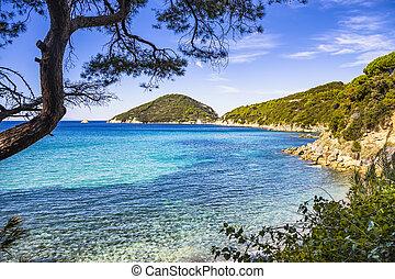 Elba island sea, Portoferraio Viticcio beach coast and...