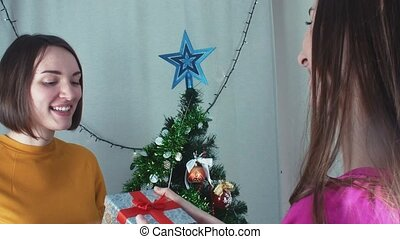 Two cheerful girls giving Christmas presents t and opening...
