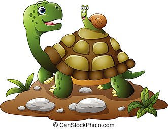 Cartoon funny turtle with snail - Vector illustration of...
