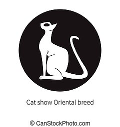 cat - Oriental shorthair cat isolated. Flat logo domestic...