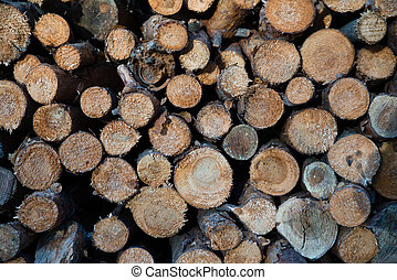 pile of cut wood - Hirizontal photo of pile of cut and...