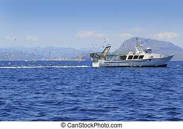 professional fisherboat many seagulls blue ocean sea sunny...