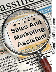 Job Opening Sales And Marketing Assistant. 3D. - Magnifier...