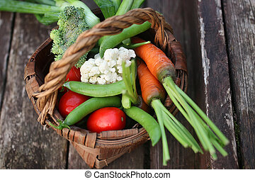 vegetables in basket harvest