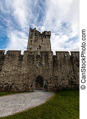 Entrance of Ross Castle - Snapshot of the entrance of Ross...