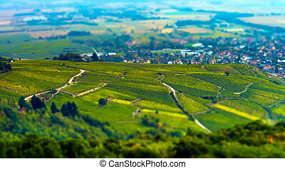 Aerial panoramic tilt-shift view to village Ribeauville from...