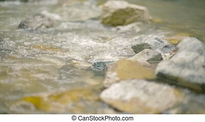 Flowing water in the mountain river. Close up. - Calm stream...