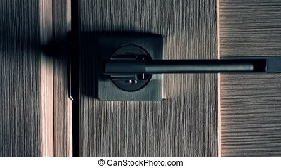 Opening modern interior door, dark background. Unknown and...