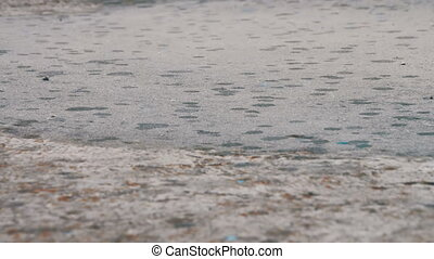 Rain Drips Through The Puddles. Summer rain drops falling on...