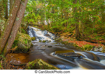 Potts Falls in Autumn - Potts Falls are located near the...