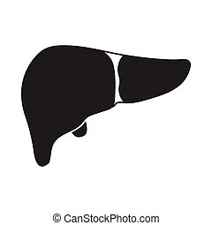 Liver icon in black style isolated on white background....
