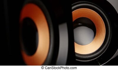 Speaker cone pumping to the sound of the bass. Closeup - a...