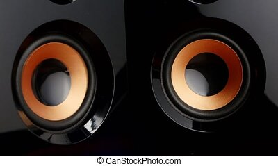Moving sub-woofer. Speaker cone pumping. Closeup - Speaker...