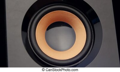 Moving sub-woofer. Speaker part. Closeup - Loud speaker,...