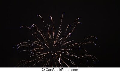Colorful fireworks at holiday night - Beautiful fireworks...