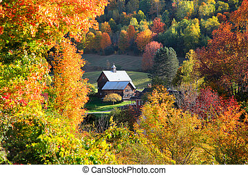 Barn in autumn tree frame