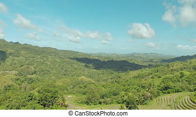 Filipina jungle and forest. Aerial views 2.