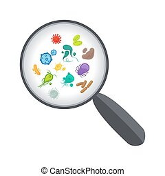 Bacteria and virus under magnifying glass - Bacteria and...