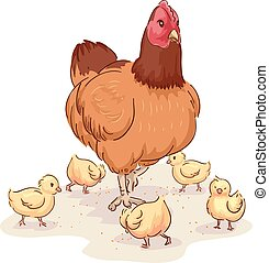 Mother Hen Looking After Chicks - Animal Illustration of a...