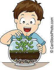 niño, terrario, niño, botánica
