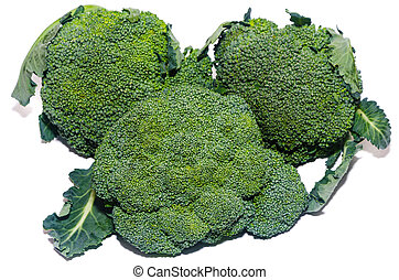 healthy food broccoli isolated
