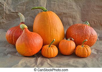 Orange pumpkins still life
