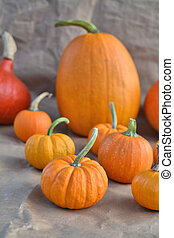 Orange pumpkins decoration on paper background