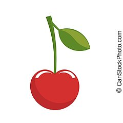 Cherry fruit vector