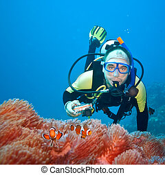 Clownfishes and photographer - Underwater photographer and...
