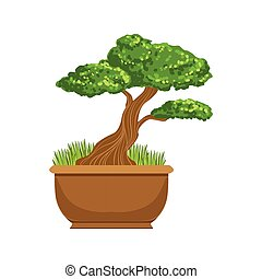 Bonsai Japanese Culture Symbol. Isolated Object Representing...