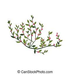 Tiny Pink Wild Flower Hand Drawn Detailed Illustration....