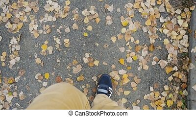 Top of view of autumn season in hipster style shoes in...