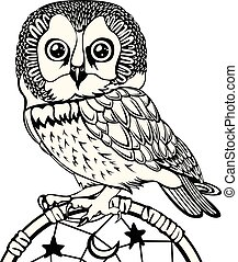 Owl with Dream Catcher - Vector of hand drawn owl with dream...